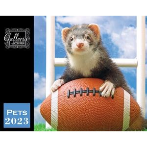 Galleria Wall Calendar 2020 Pets (Low Price )